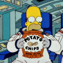 Homer in The Simpsons