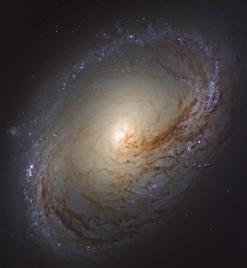 NGC 3368