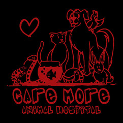 Care More New Logo