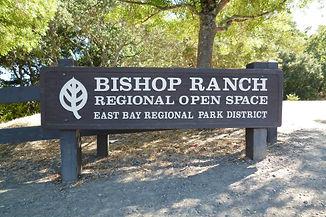 Bishop-Ranch-Regional-Open-Space-San-Ramon-Realtor.jpeg