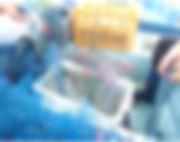 舞鶴市の水産業