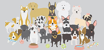 Groupd of Dogs Graphic small.jpg
