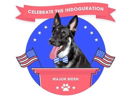 Celebrate the Indoguration