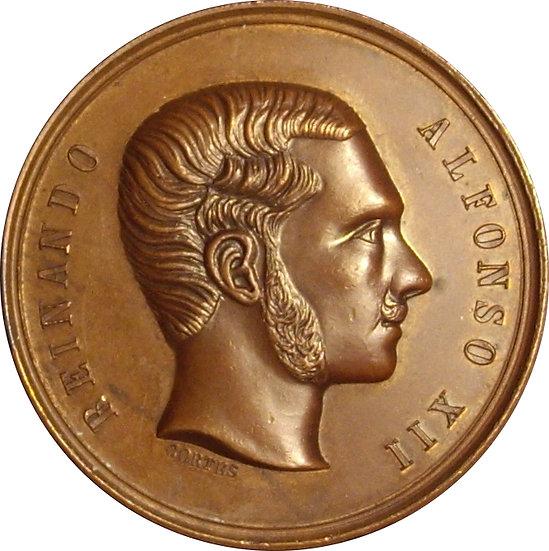 ESPAÑA. ALFONSO XII. EXPOSICIÓN NACIONAL VINICOLA 1.877. PERFECCIÓN