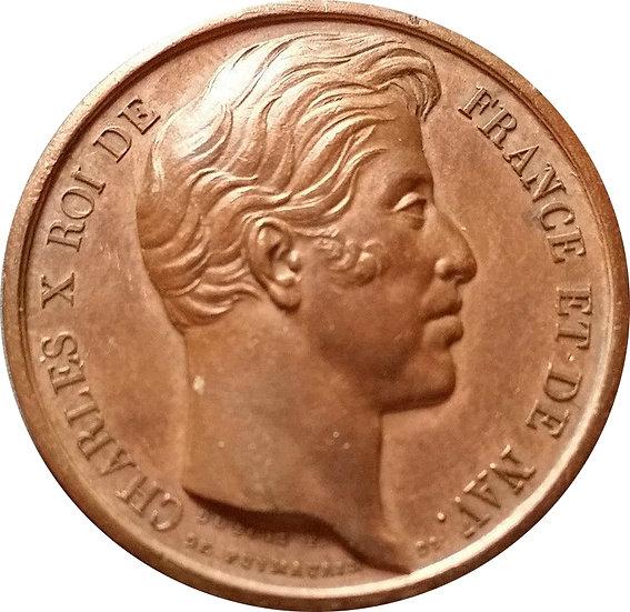 FRANCIA. MEDALLA DE CARLOS X. 1.827