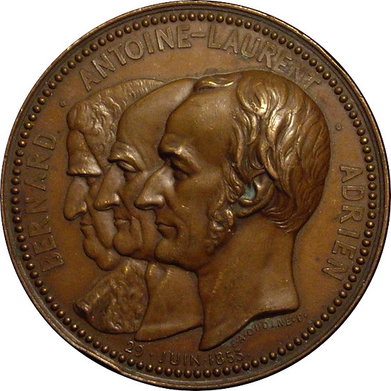 FRANCIA. MEDALLA HOMENAJE BOTÁNICOS DE LA FAMILIA JUSSIEU. 1.853