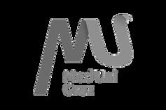 med uni graz logo.png