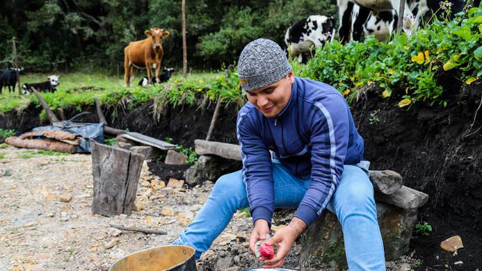 Lavando las papas criollas
