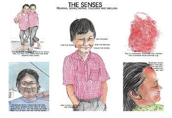 affiche The senses.jpg