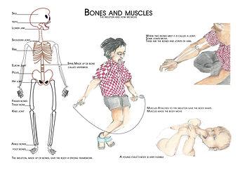 affiche bones.jpg