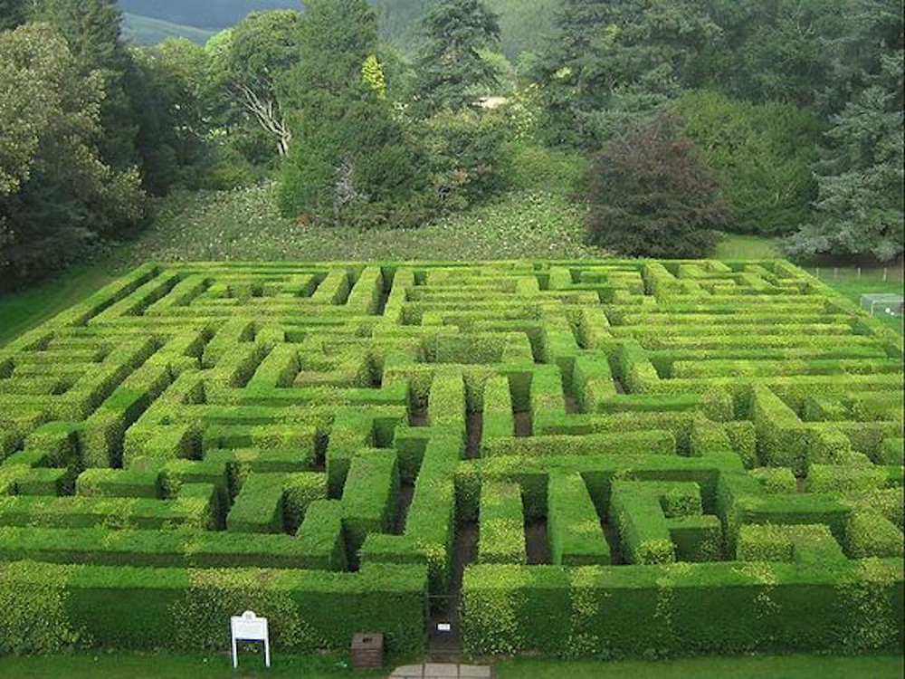 Image Of The Maze At The Traquair House