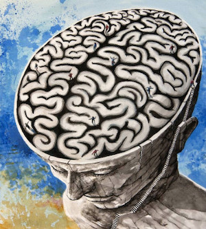 Mazes On The Brain