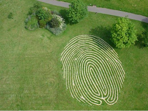 FingerPrint Grass Maze