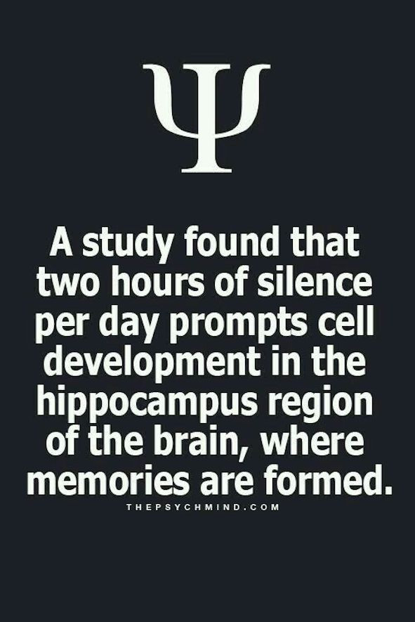 Image Indicating 2hrs Of Silence Per Day Helps The Brain