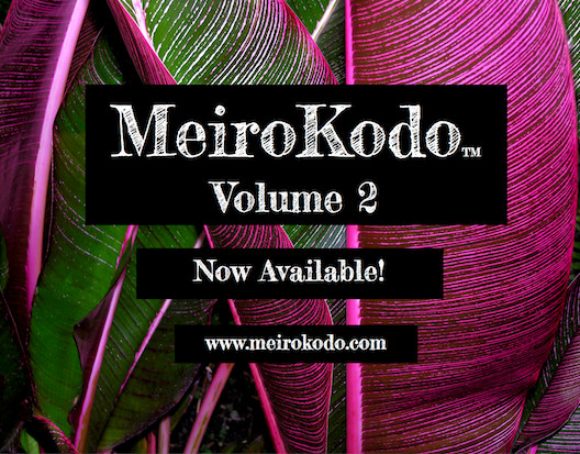 Image Of Volume II Announcement For MeiroKodo