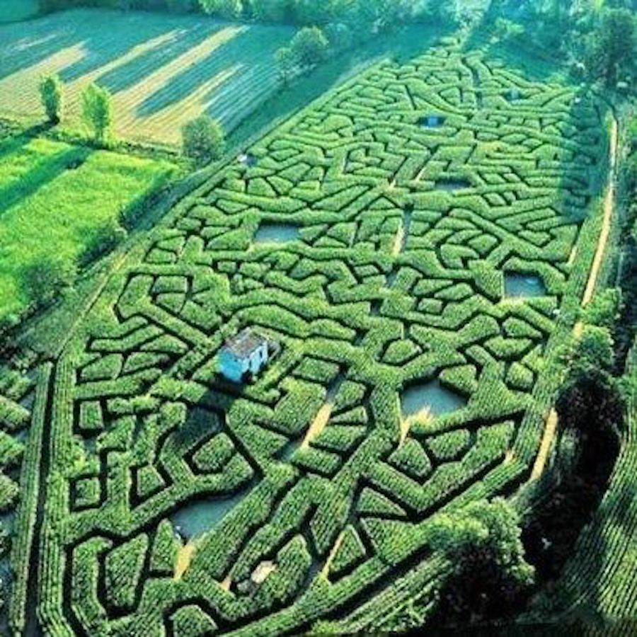 Image Of A House Surrounded By A Large Maze