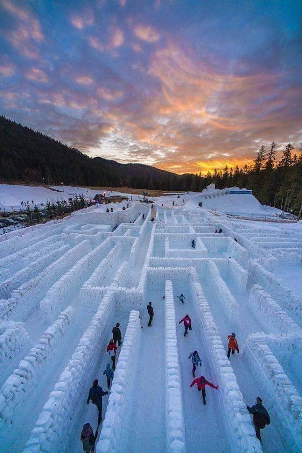 Image Of People In A Snow Maze
