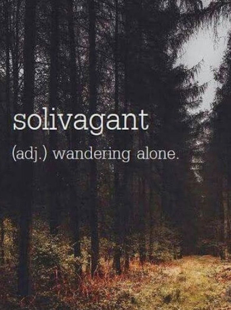Image Of The Word Solivagant With Definition