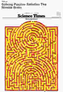Image Of Article From Science Times Showing A Maze