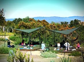 Yoga In Nature Mini-Retreat with Lorrie Shepard