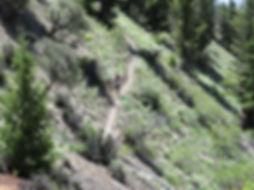Trail running in central Idaho
