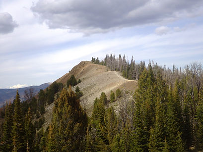 High elevation ATV ridge trail in Idaho.