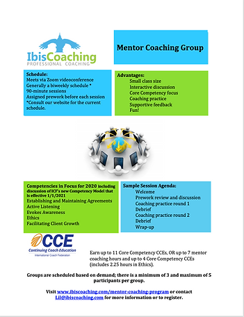 Mentor Flyer 2020 no price.png