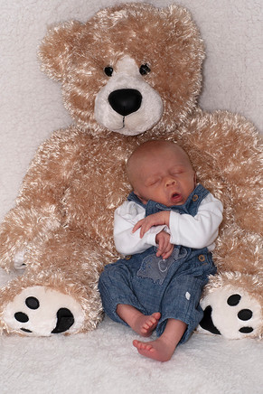 Snoozing with Cheddar Bear.