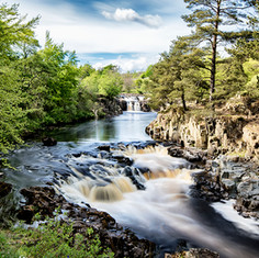 High/Low Force.