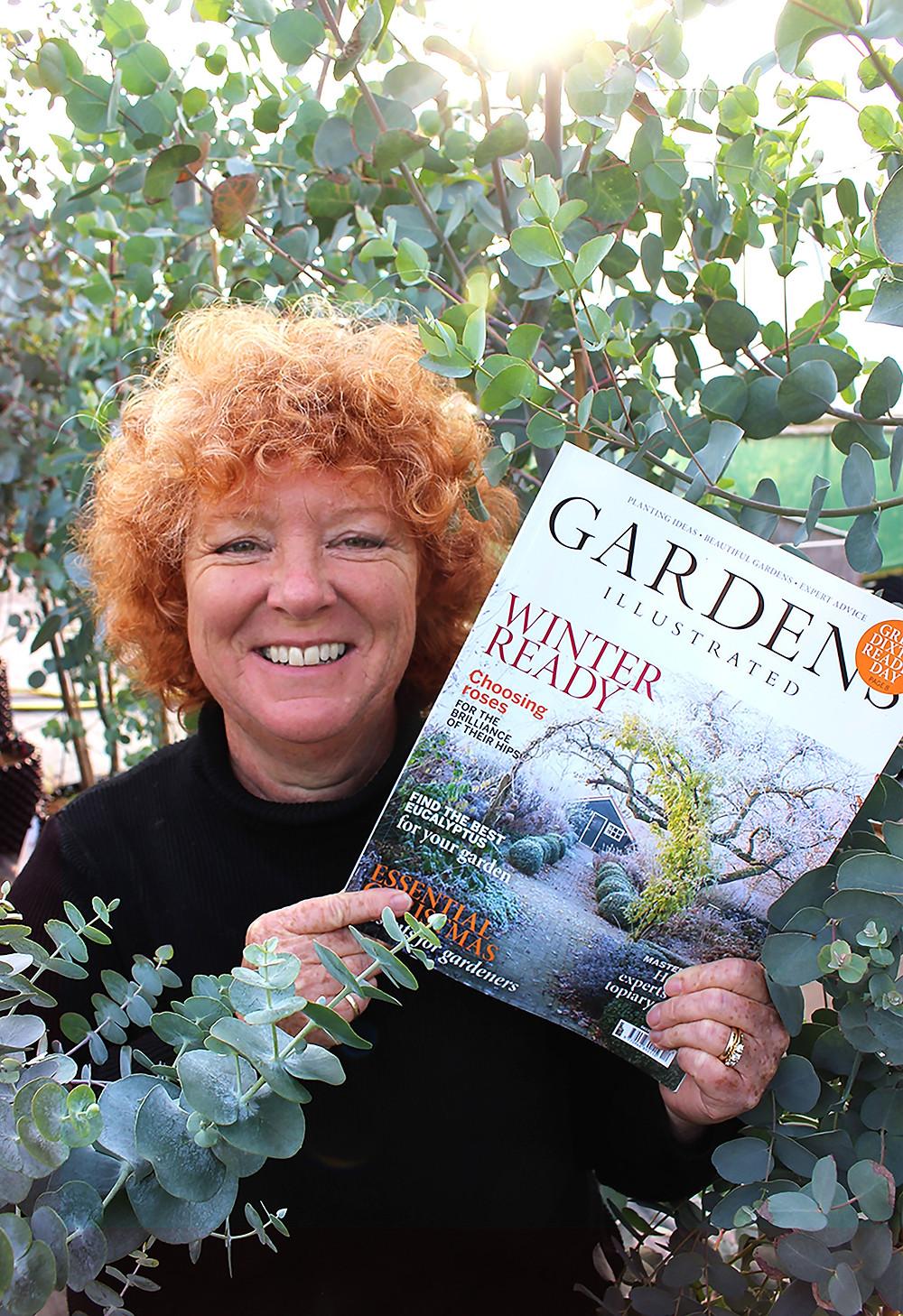 Hilary Collins hardy eucalyptus gardens illustrated magazine