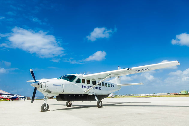 EAA-Executive-Air.jpg
