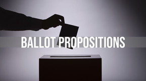 NYS BALLOT PROPOSITIONS