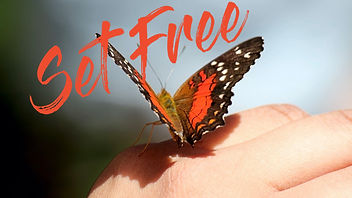 set free from to.002.jpeg