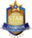 Sunrise Star Logo.Champion Final.png