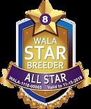 Sunrise Star Logo.AllStar Final.png