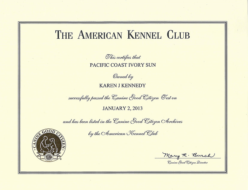 The American Kennel Club