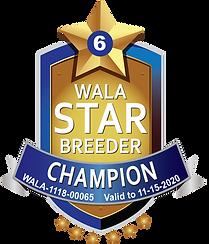 Sunrise Australian Champion Star Logo.pn