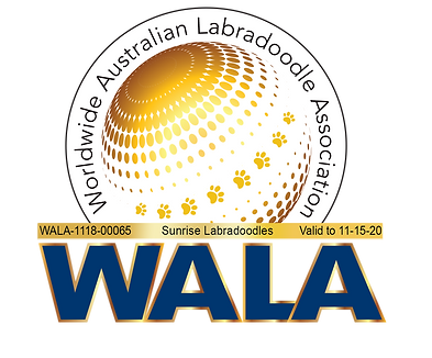 Sunrise WALA Logo-1118-00065.png