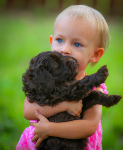 labradoodles and kids