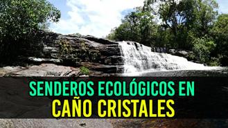 Se construirán corredores ecológicos, para incentivar el turismo