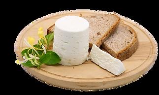 caprino fresco biologico, formaggio magro, basso contenuto di colesterolo, ideale per intolleranza latte vaccino, vicenza, padova, venezia, la capreria