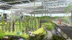 Organic Farm Greenhouse