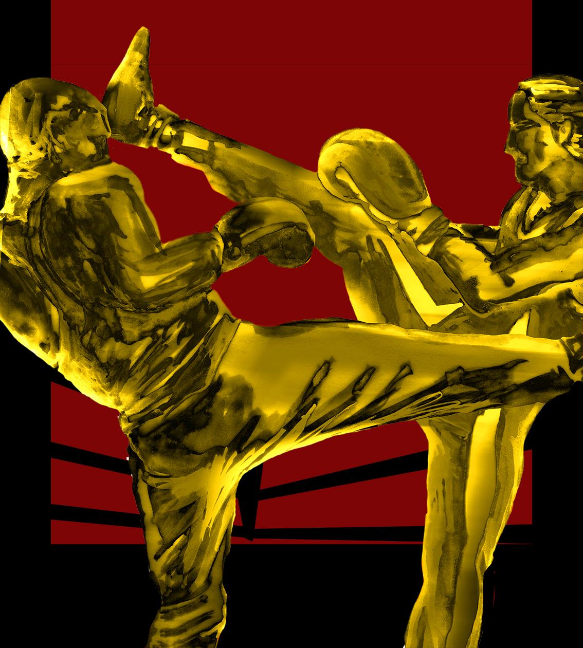 Affiche boxe française