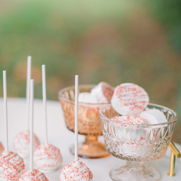Cake Pops and Covered Oreos