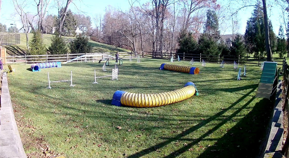 CH Agility Field.png