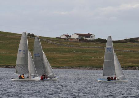 Whalsay Shetland Models Sarepta, Armeria and Firedance