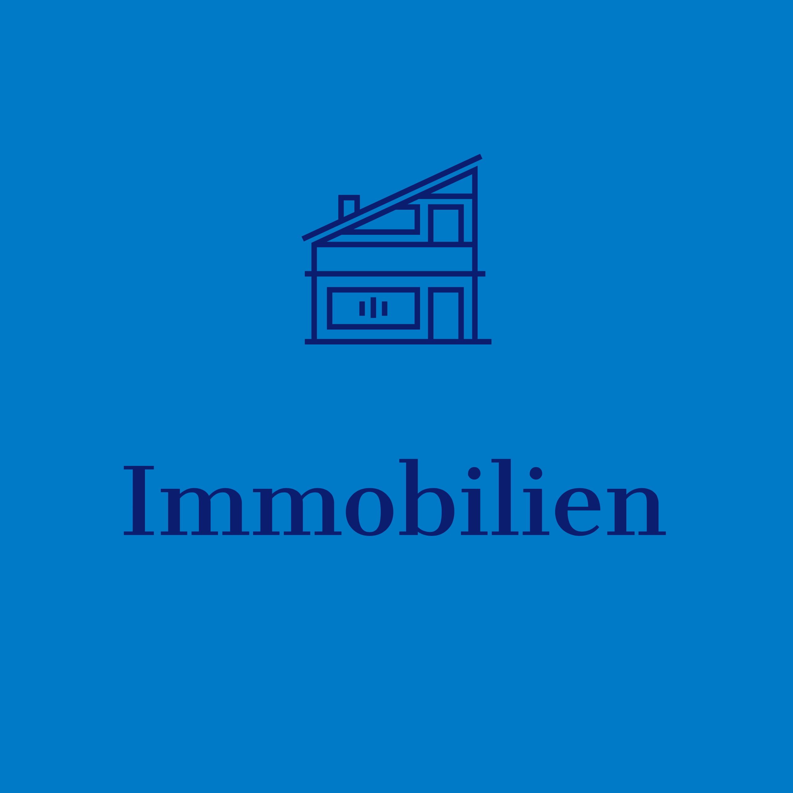 HomepageImmobilien3