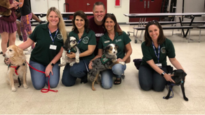 Therapy dogs at Marjory Stoneman Douglas High School