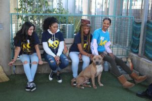 Teens Help Train Shelter Dogs