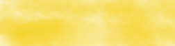 YellowWashBanner.png